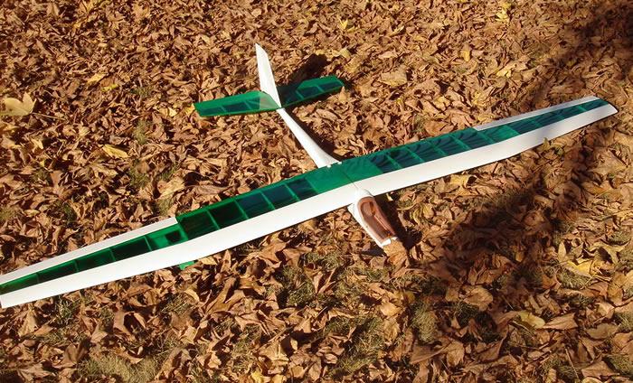 Green Sleeve R/C Sailplane